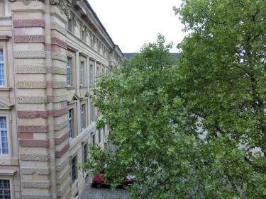 Blick auf Museum und Toulonplatz
